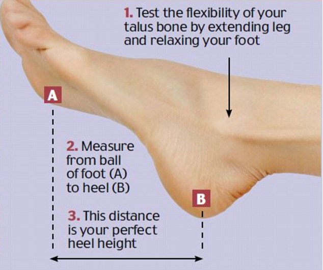 Reviewing the 'Perfect Heel Height' Formula   The Well-Heeled